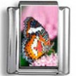 Butterfly Wings Photo Charm