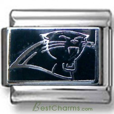 Carolina Panthers Italian charm