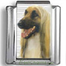Afgan Hound Dog Photo Charm