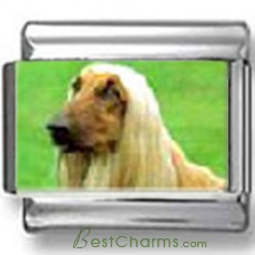 Afghan hound Dog Photo Charm