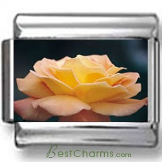 Blooming Flower Photo Charm