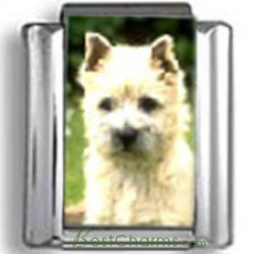 Cairn Terrier Dog Photo Charm
