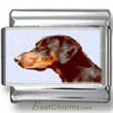Doberman Pincher Dog Photo Charm