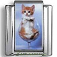 Kitten in Wine Glass Photo Charm