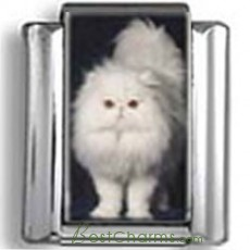 Puffy White Persian Cat Photo Charm