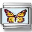 Tropical Butterfly photo charm